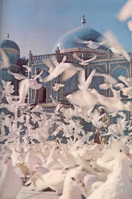 Envol des oiseaux devant l'une des mosquées bleues de la capitale du prince de Perse. https://turandoscope.wordpress.com/2016/09/03/16-la-caravane-du-prince-de-perse/