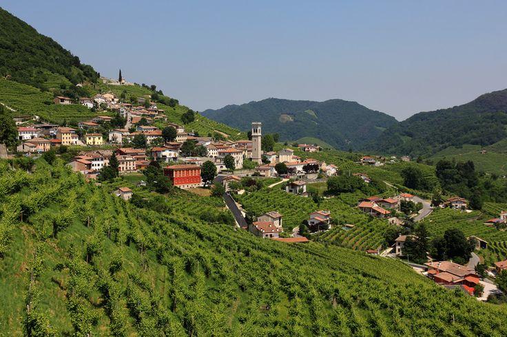 Il prosecco by Arthur P.   Santo stefano (Frazione di Valdobbiadene)-Italy With its hills and its sparkling wine.