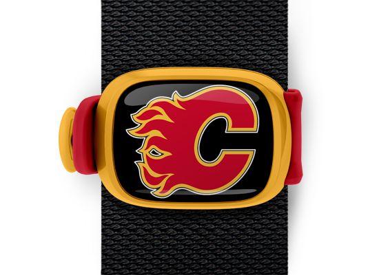 Calgary Flames Stwrap