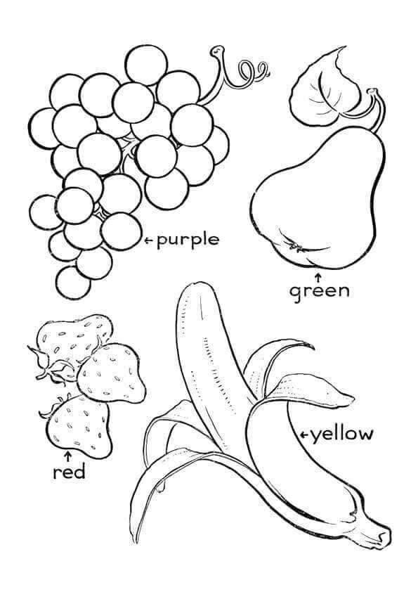Summer Fruits Coloring Pages  Fruit coloring pages, Food coloring