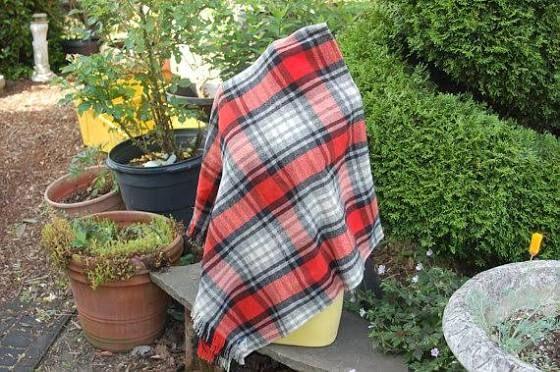 paris woolen mills blanket
