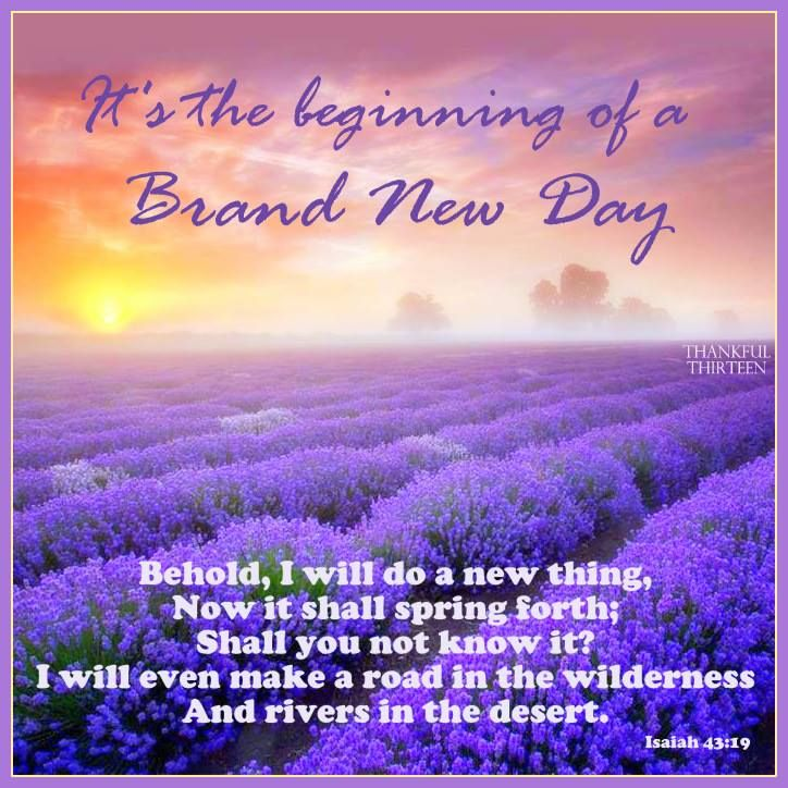Itu0027s The Beginning Of A New Day Morning Good Morning Morning Quotes Good  Morning Quotes Morning Quote Good Morning Quote Positive Good Morning Quotes