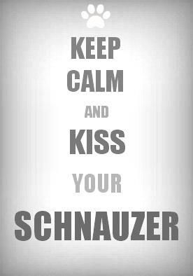 "I was torn between pinning this to my ""Keep Calm"" board or my Schnauzer board  - what a problem to have, eh? ;)"