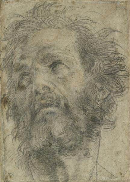 Andrea del Sarto (1486–1530), Head of a Man Looking Up, ca. 1527. Black chalk, with later red chalk additions, 9 3/4 x 6 15/16 in. (24.7 x 17.7 cm). The Ashmolean Museum, Oxford; purchased, 1944 © Ashmolean Museum, University of Oxford.
