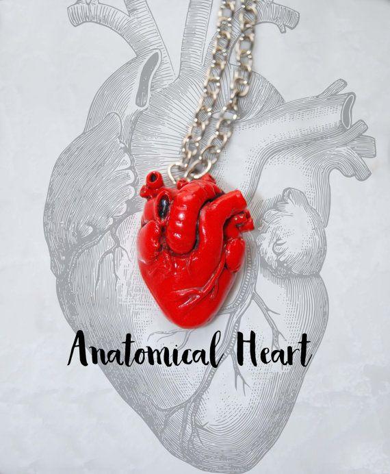 Colgante corazón anatómico  Colgante corazon  Regalo de San