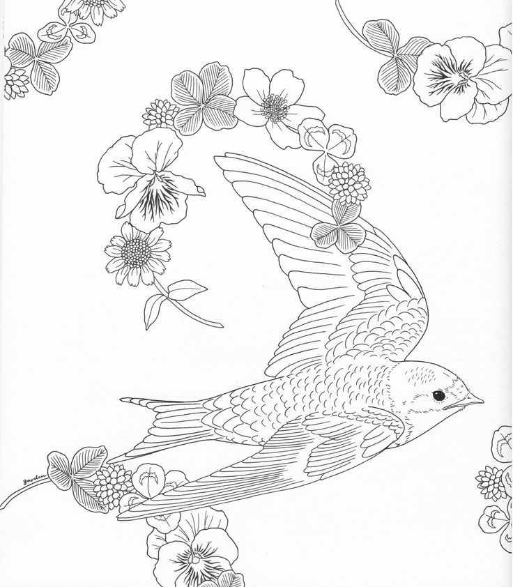 49 best coloring pages to print harmony of nature images on pinterest adult coloring. Black Bedroom Furniture Sets. Home Design Ideas
