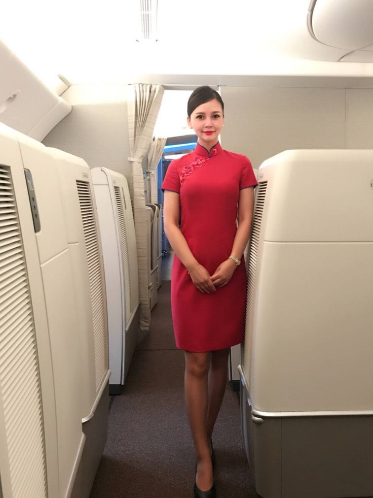 cover letter for flight attendant position%0A Find this Pin and more on JET SETTER by waiwaiyama      See More  Flight  attendants