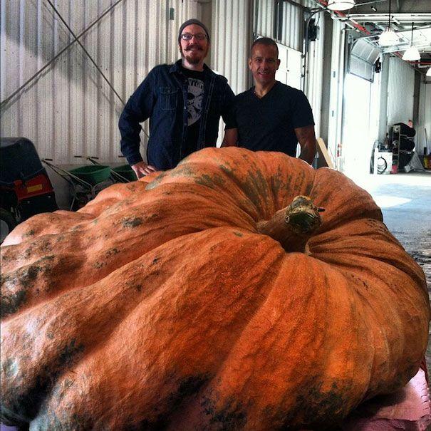 Best Ray Villafane Images On Pinterest Halloween Pumpkins - Mind blowing pumpkin carvings by ray villafane 2