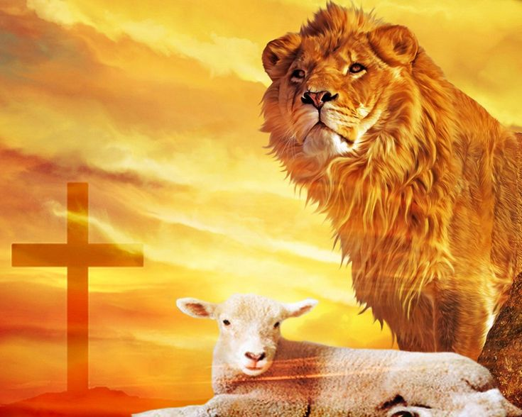 Bible Lion And Lamb Verses