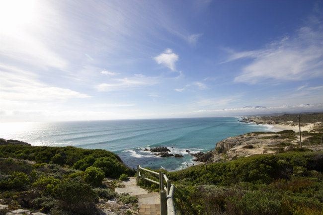 South Africa's Gansbaai has so much to offer