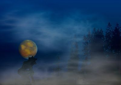 Paranormal-Series: Werewolf Legends - History, Facts, & Encounters