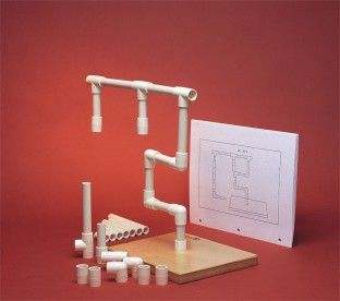 Pipe Tree adult cognitive