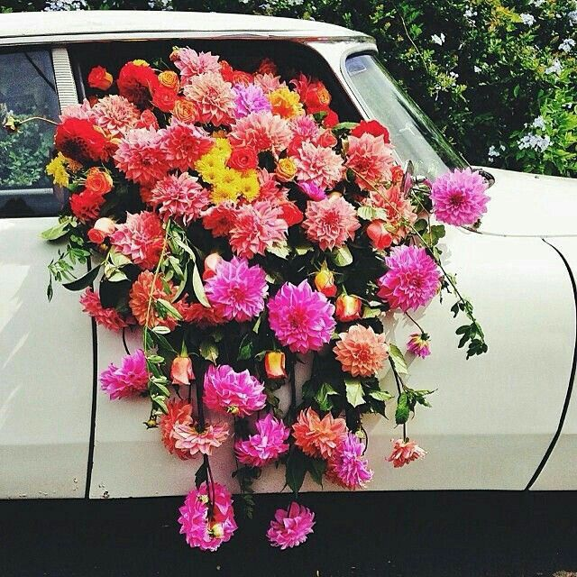 29 best flowers to the Ladies images on Pinterest | Floral ...
