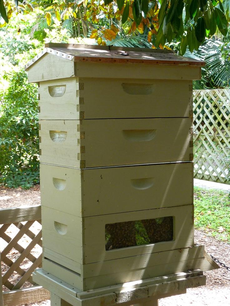 Bee hive @ Fairchild BG
