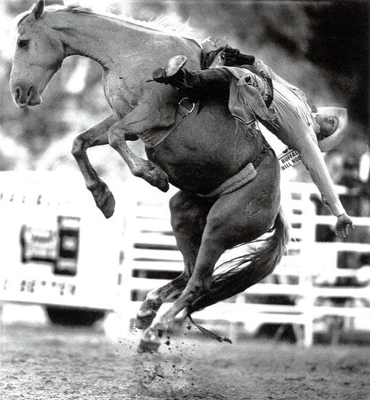 Photo of bareback bronc riding at the Buffalo Bill Rodeo: