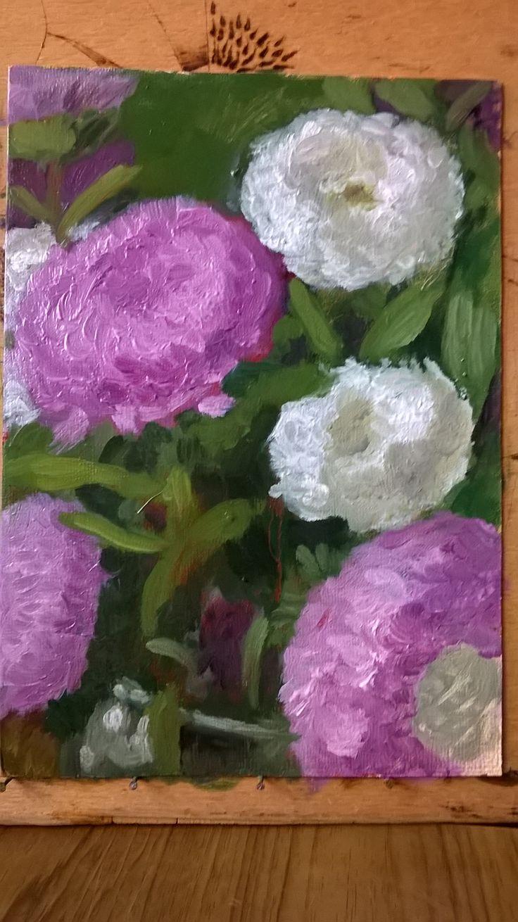 Цветы. Этюд. Flowers. Etude.