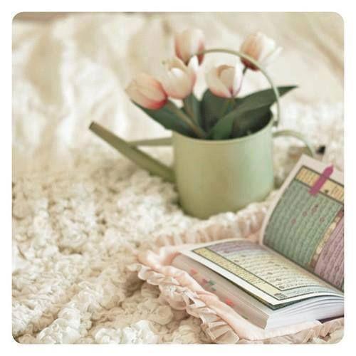 Kitapların En Güzeli...