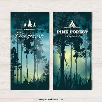 Banner di bella foresta con alberi ad alto fusto al tramonto