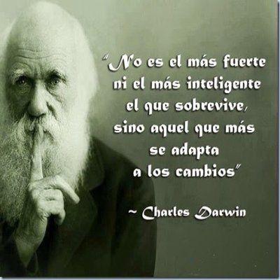 Frases De Reflexion Celebres. Charles Darwin.