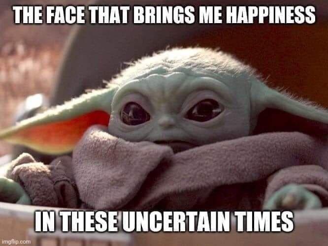 Look At This Widdle Face Yoda Funny Yoda Meme Yoda