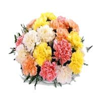 Online flowers roses bouquet delivery in Bangalore city with same day and midnight delivery through bengaluruflorists.com because we are delivery fresh cake delivery in bangalore  Website : http://bengaluruflorists.com/cakes.htm