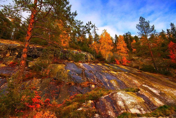 Finnish beauty