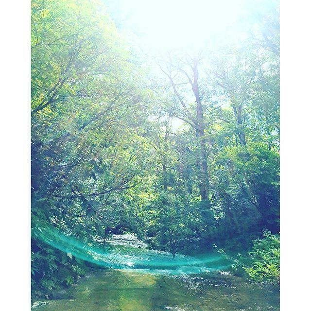 【yu.6.13】さんのInstagramをピンしています。 《森が神々しい〜〜٩(ˊᗜˋ*)و✧*。 #只見町#福島県 #沢#川#マイナスイオン #緑#自然#ネイチャーツアー#nature #travel#green #凛花Reincarnation  #スピリチュアル #縁結び #神社 #神様 #パワースポット #旅 #旅行 #Japan #和 #癒し #樹#tree#木#森#forest》