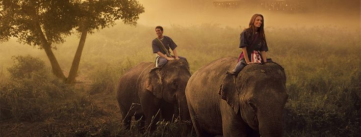 The Four Seasons Golden Triangle in Thailand... A must before I retire! You get to ride and help train elephants!