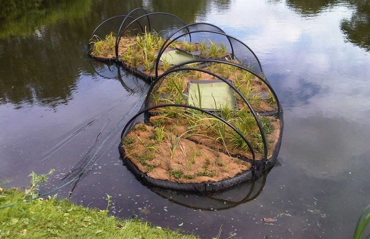 Biomatrix floating islands improve water quality and for Plastic floating pond plants