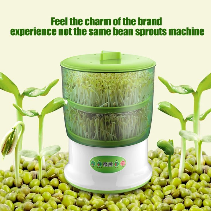 <b>Bean sprouts</b>, Home appliances и <b>Sprouts</b>