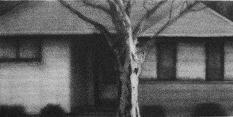 Elaine Green House #20, 2007 charcoal $800 8 1/2 x 17 inches