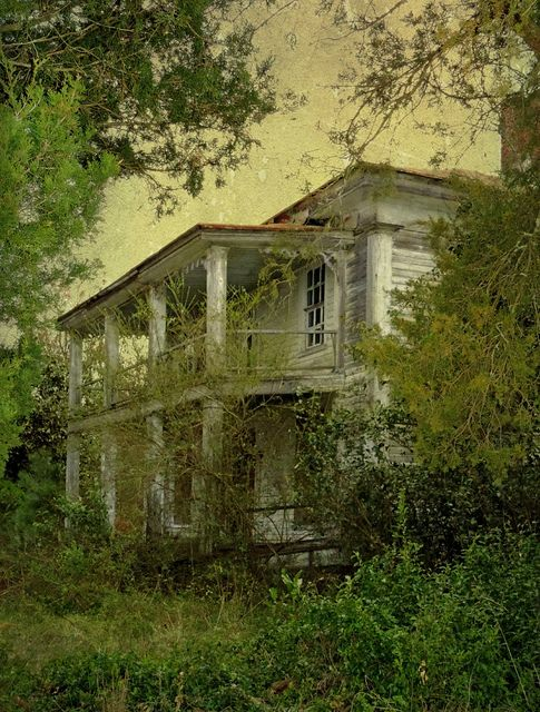 The Grand Abandonment:  Lenoir County, North Carolina This hauntingly beautiful and grand old antebellum mansion is almost lost to nature and time.