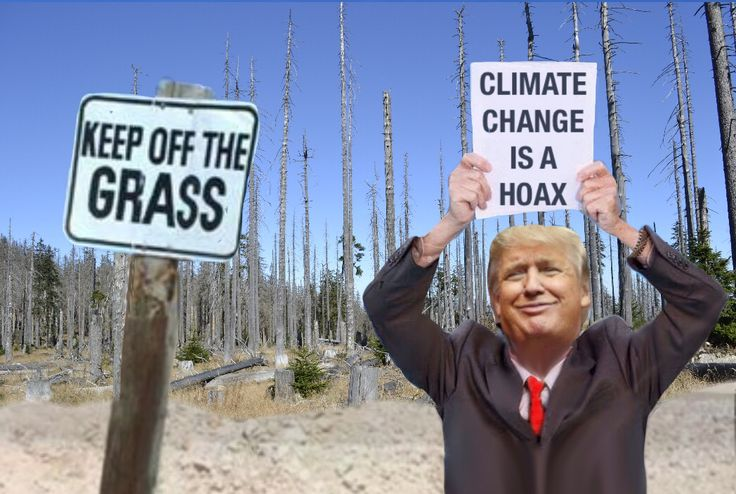 Kinda ironic that a tv reality host can not accept reality. The climate is changing and as the temperatures continue to rise throughout the world the local weather becomes erratic. Sea levels rise causing damage all along the eastern seaboard. Yet it is the profit that Trump wants to protect, not our future.