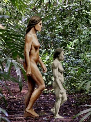 """Homo floresiensis (""""Flores Man"""", nicknamed """"hobbit"""" and """"Flo"""") is a possible species, now extinct, in the genus Homo. The remains were discovered in 2003 on the island of Flores in Indonesia. Partial skeletons of nine individuals have been recovered, including one complete cranium (skull)."""