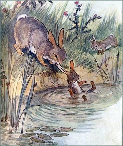 vintage bunny illustration