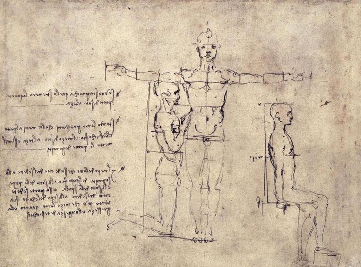 Contour Line Drawing Leonardo Da Vinci : Best leonardo da vinci images drawings