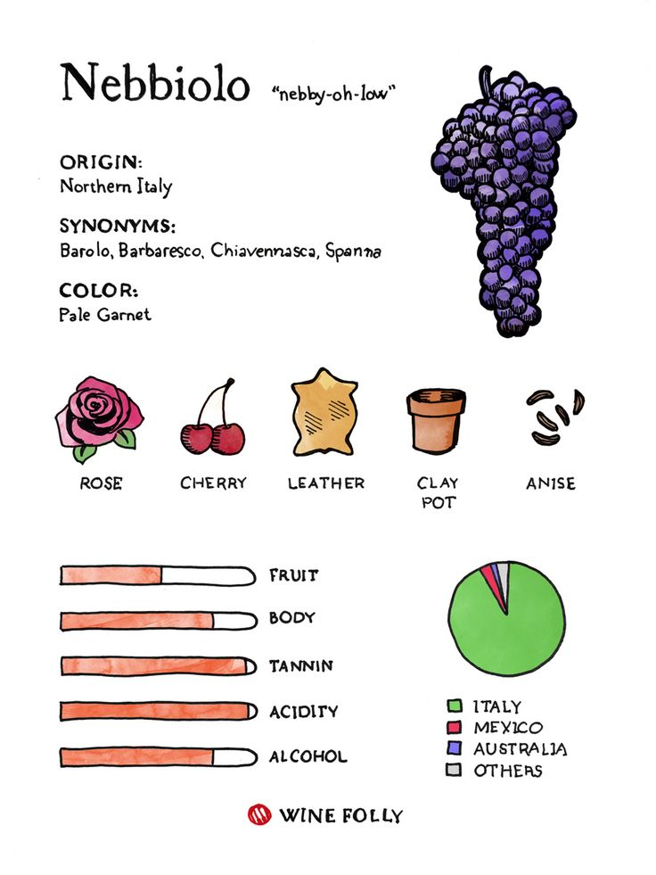 Nebbiolo is the grape of Barolo and Barbaresco along with many lesser known regions (such as Roero and Langhe) which offer excellent value for those looking for great wines.