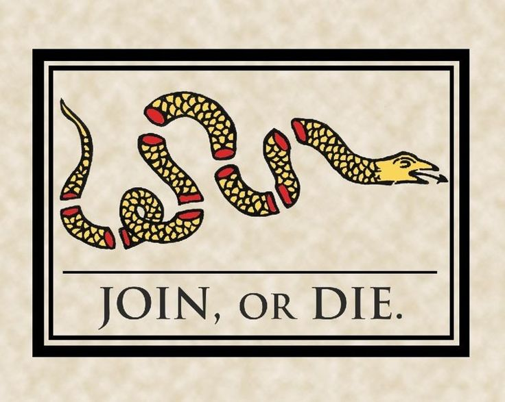 Join Or Die Snake Revolutionary War 1776 Gadsen Flag Us History Canvas Print New #Realism