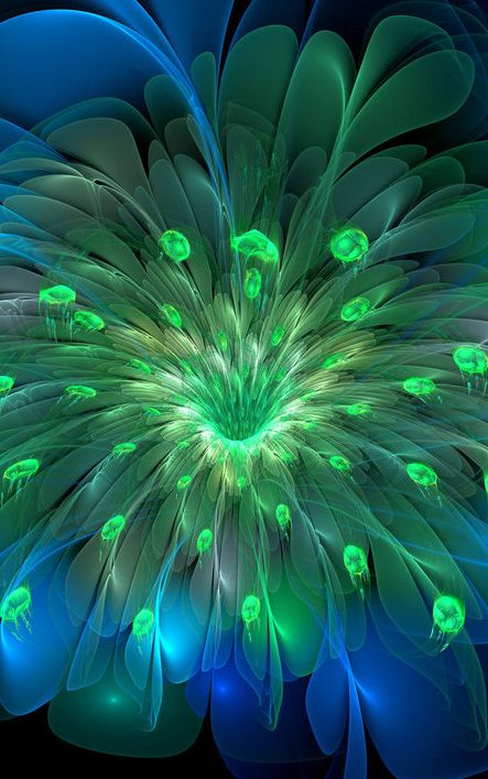 Peacock Bloom by wolfepaw                                                       …