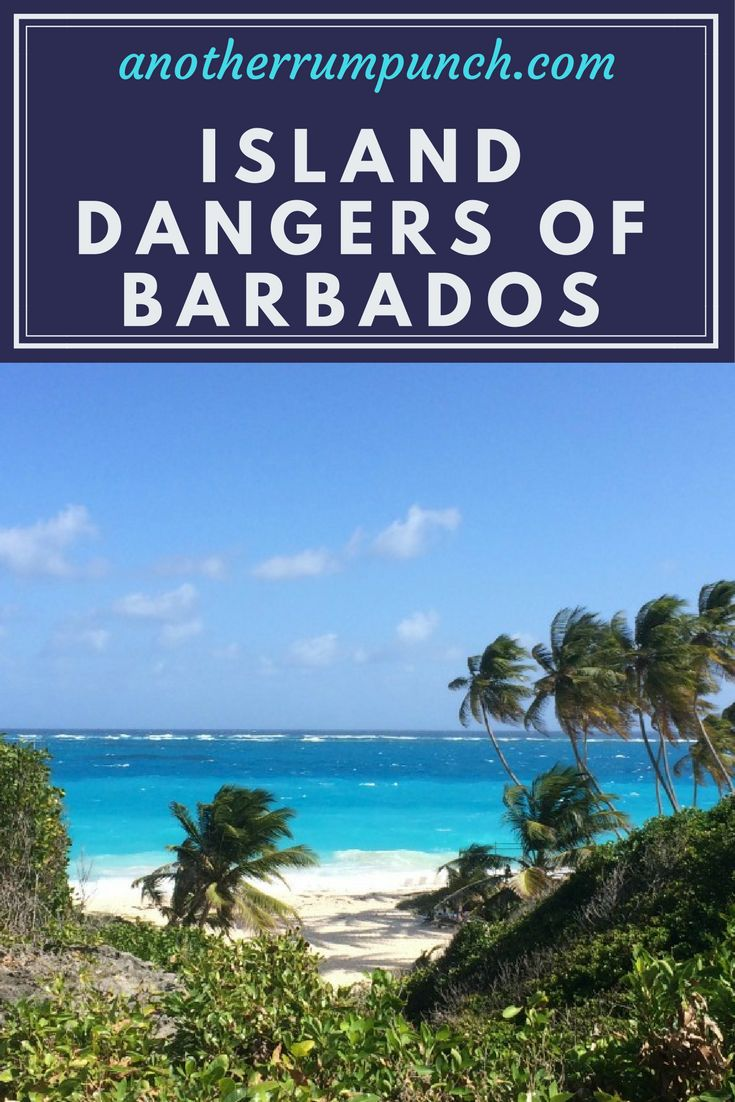 A few expat island dangers of Barbados.