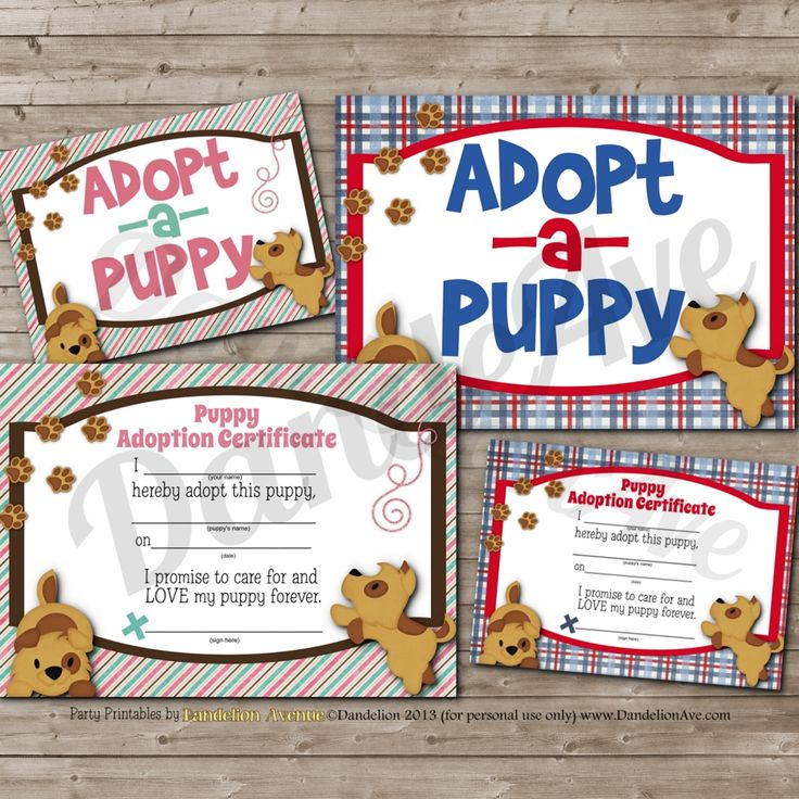 Instant Download Printable PDF files for: Puppy Adoption Certificate: boy and girl designs (2 5×7 images on an 8.5×11 pdf file) Puppy Adoption sign: boy and girl designs (2 5×7 images on an 8.5×11 pdf file) All files are created in the highest quality – 300