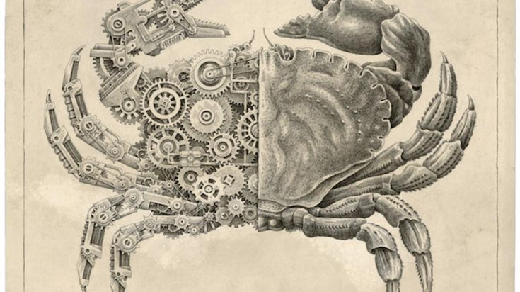 Image result for crab mechanism drawing