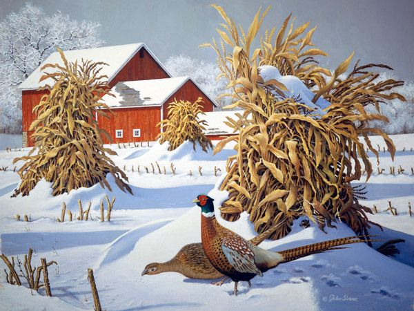 Pheasant Run JohnSloaneArt.com - John Sloane - Reminds me of my dad.