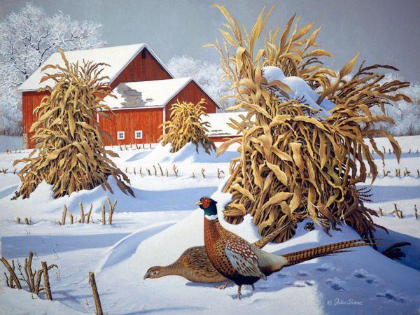 Pheasant Run   John Sloane Art