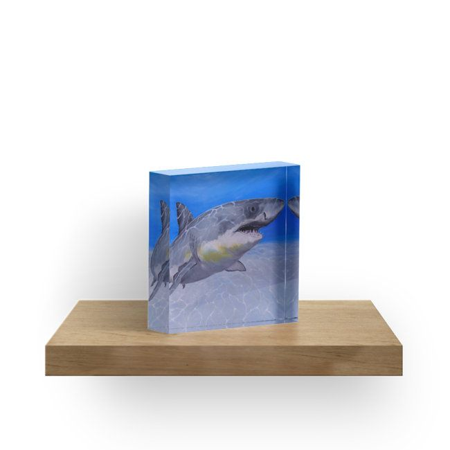 acrylic block, home,office,accessories,decor,items,cool,beautiful,fancy,unique,trendy,artistic,awesome,fahionable,unusual,gifts,presents,for sale,design,ideas,aqua,blue,great white,shark,wildlife,ocean,redbubble