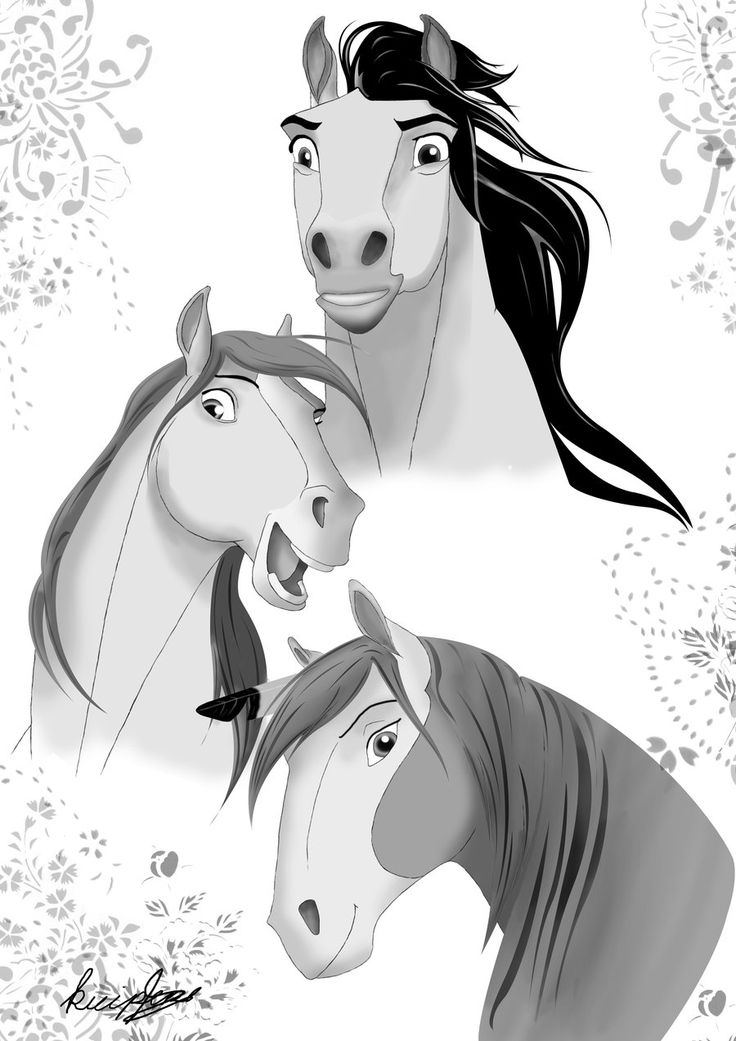 INCREDIBLE animated Spirit sketches!! | Horse animation ...