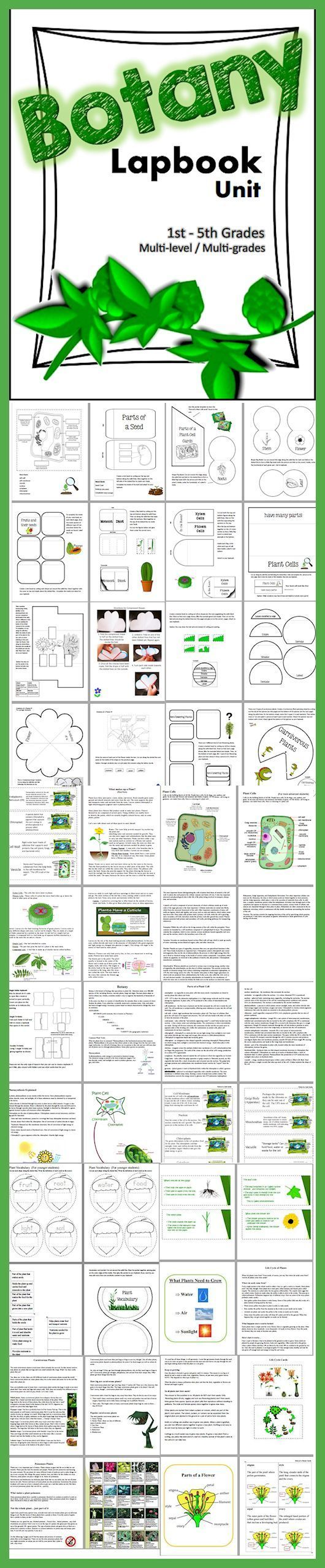 Download Club members can download this 90 page Botany - Plants - Science Lapbook for 1st-5th grades @ www.christianhome...