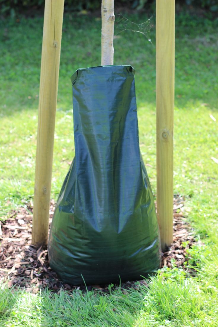 Tree Watering Bag, https://www.barcham.co.uk/accessories/tree-watering-bag