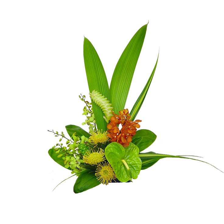 39 best Tropical flower arrangments images on Pinterest | Tropical ...