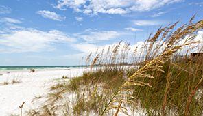Siesta Key oceanfront vacation rentals